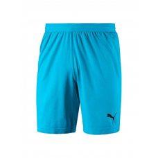 ШОРТЫ ВР. PUMA FINAL evoKNIT GK Shorts (SS18) 70345508