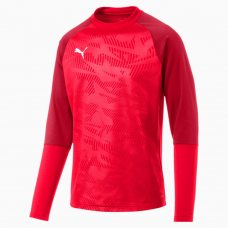 СВИТЕР ТРЕН. PUMA CUP Training Sweat Core (SS19) 65602101